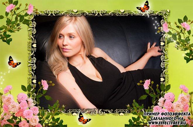 Вставить фото в милую рамочку с цветами и бабочками, сделать онлайн