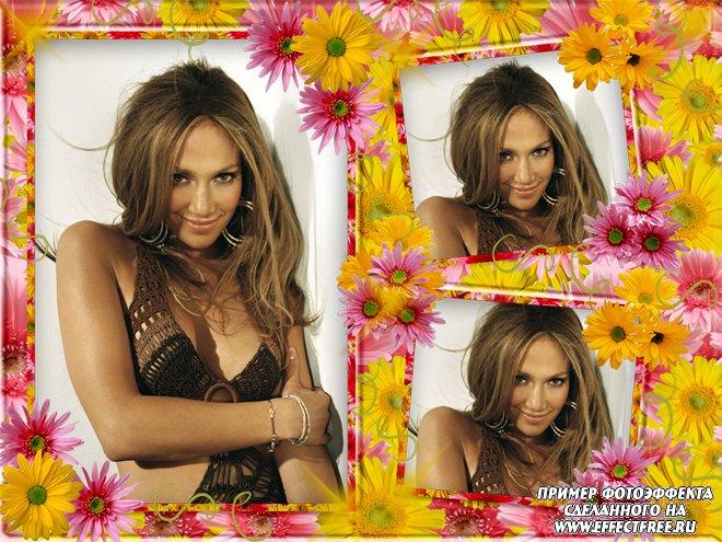 Красивая цветочная рамочка на три фотографии, вставить фото онлайн