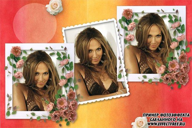 Фоторамочка с розами на три фотографии, сделать онлайн фотошоп