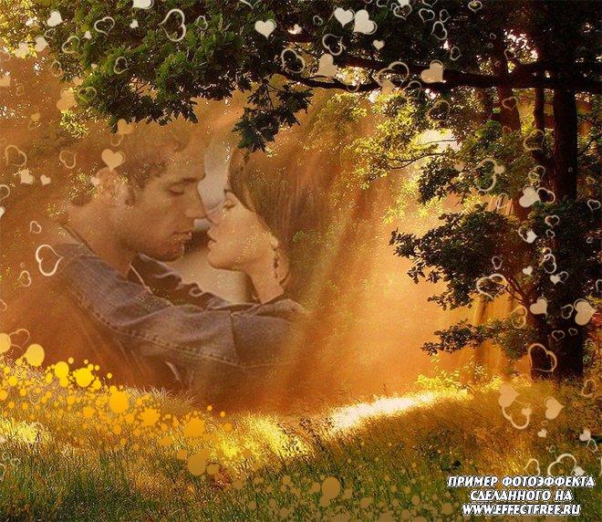 Романтический фотоэффект в лесу в лучах солнечного света, вставить фото онлайн