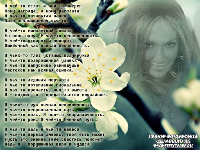 Фотоколлаж со стихом про женщину и белым цветком яблони, вставить фото онлайн на сайте