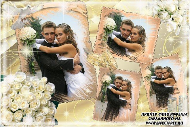 Фоторамочка на 4 свадебных фото с обручальными кольцами, сделать в онлайн редакторе