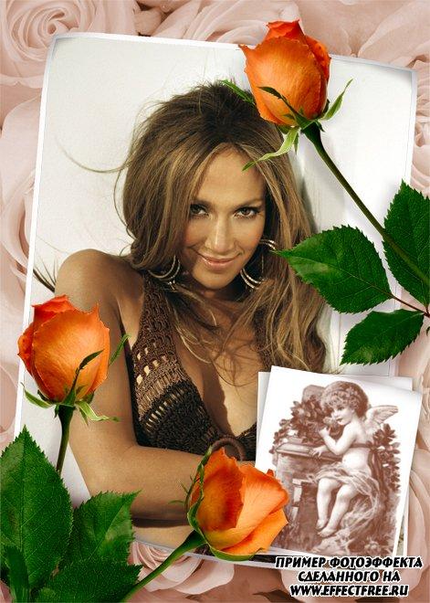 Красивая рамка онлайн с красивыми розами