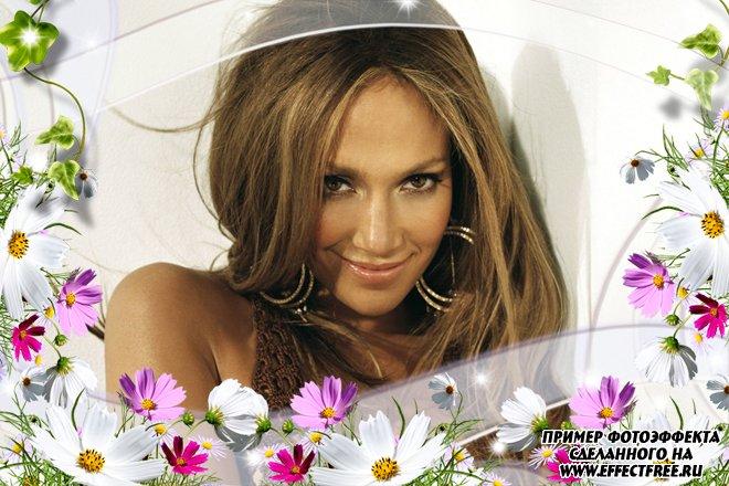 Светлая рамочка с летними цветами, вставить фото в рамку онлайн
