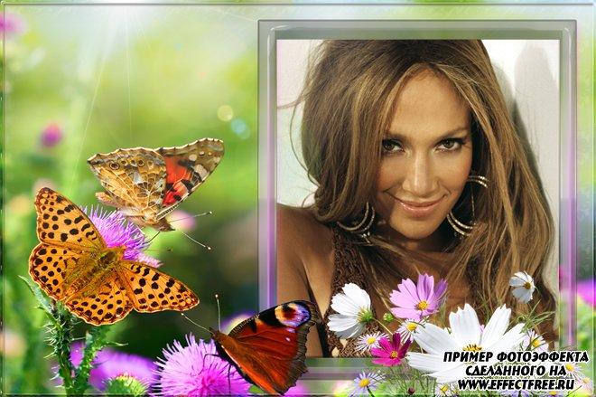 Летняя рамка с цветами и бабочкой, сделать онлайн