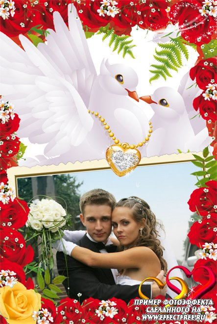 Свадебная рамочка для фото с голубями, сделать в онлайн фотошопе
