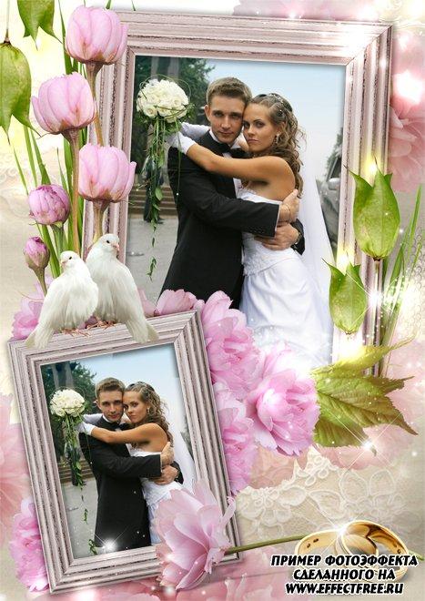 Нежная свадебная фоторамка с голубями на 2 фото, сделать в онлайн фотошопе