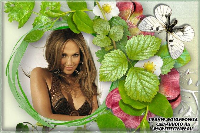 Рамочка с листочками земляники и бабочкой, вставить фото онлайн