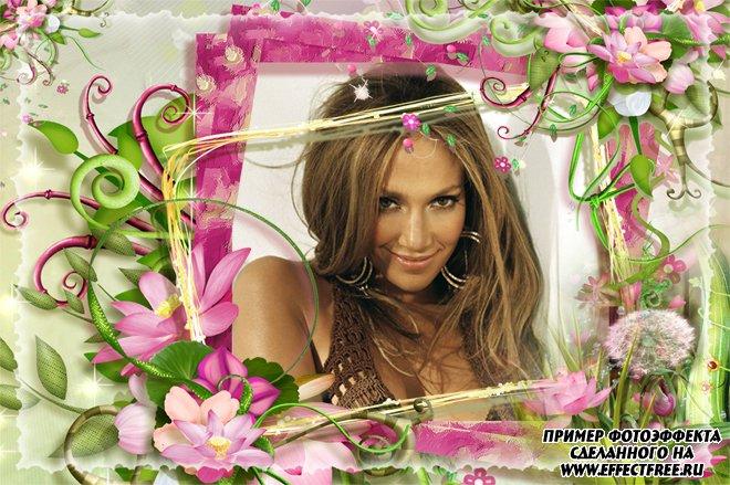Яркая рамка с розовыми цветами, вставить фото в рамку онлайн
