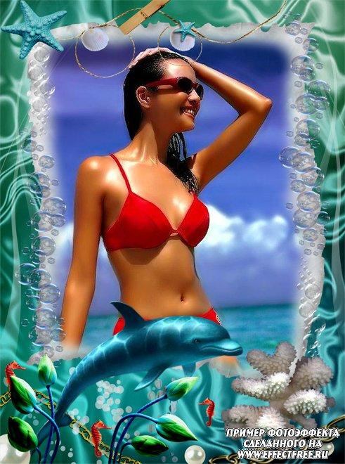 Вставить фото в морскую рамочку с дельфином онлайн