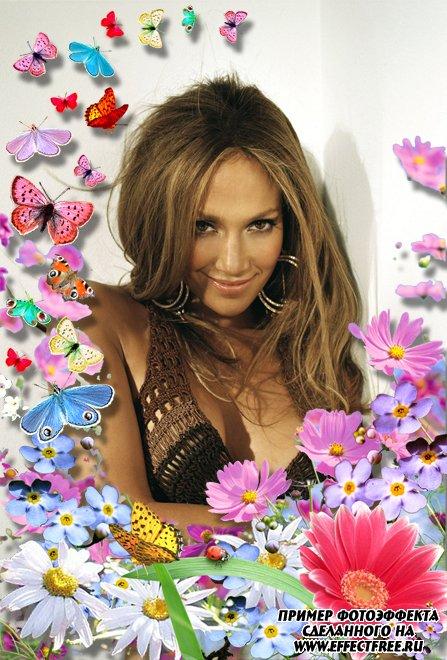 Нежная розовая летняя рамка с цветами, вставить фото онлайн
