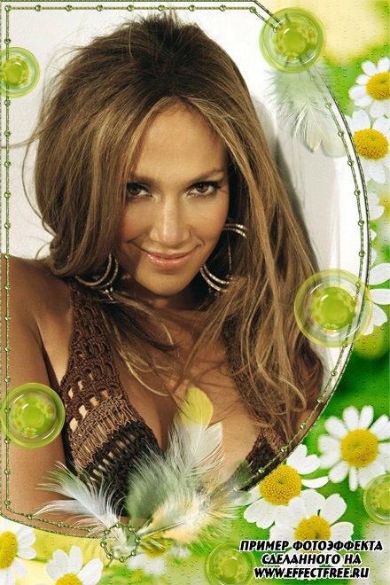 Красивая летняя рамка с ромашками, сделать онлайн фотоэффект