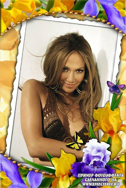 Нарядная рамка с фиолетовыми и желтыми ирисами и порхающими бабочками, вставить фото онлайн