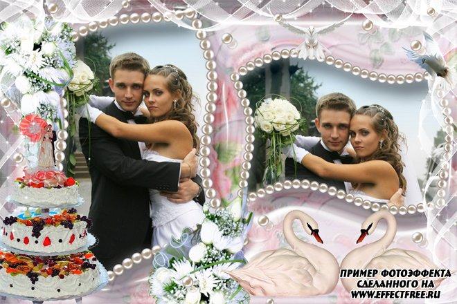 Фоторамка со свадебным тортом и лебедями на 2 фото, сделать онлайн