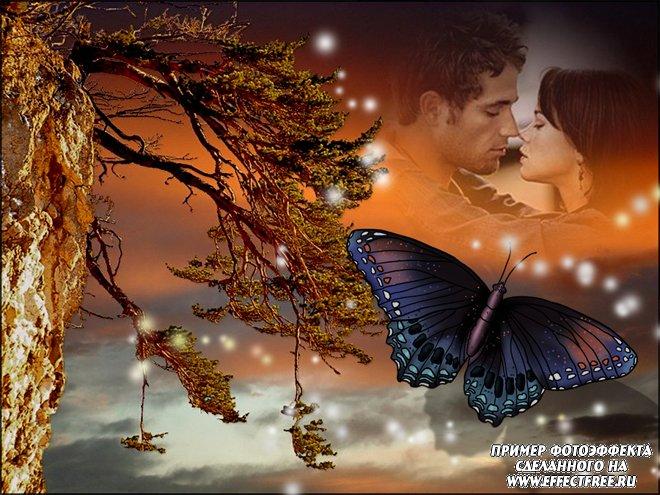 Красивый романтический коллаж с ночной бабочкой, вставить фото онлайн