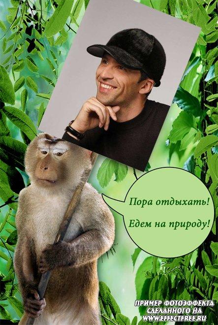 Смешная рамка с обезьяной и надписью, вставить фото в прикольную рамку онлайн