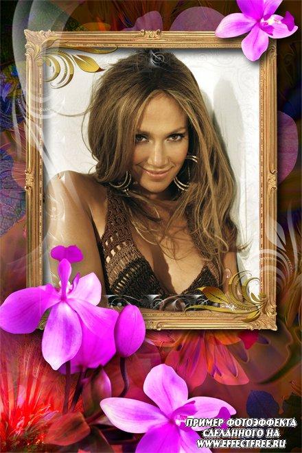 Женская рамка с большим ярким розовым цветком орхидеи, вставить фото онлайн