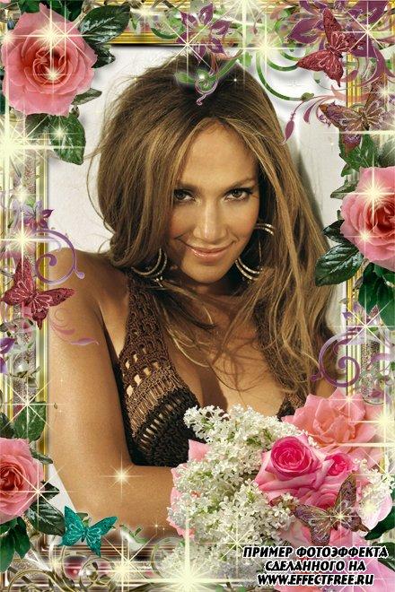 Розовая рамка с розами, завитками и бабочками, вставить фото в рамку онлайн