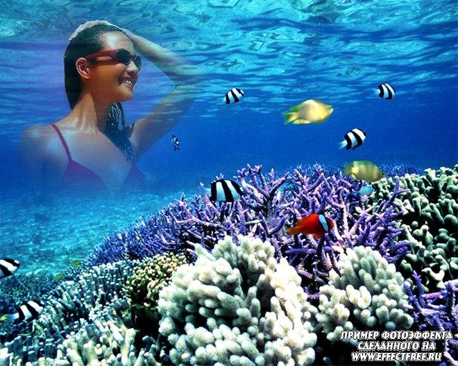 Яркий фотоэффект под водой в окружении кораллов и рыбок, вставить фото онлайн