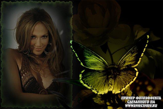 Стильный фотоколлаж с бабочкой и розой на черном фоне, вставить фото онлайн