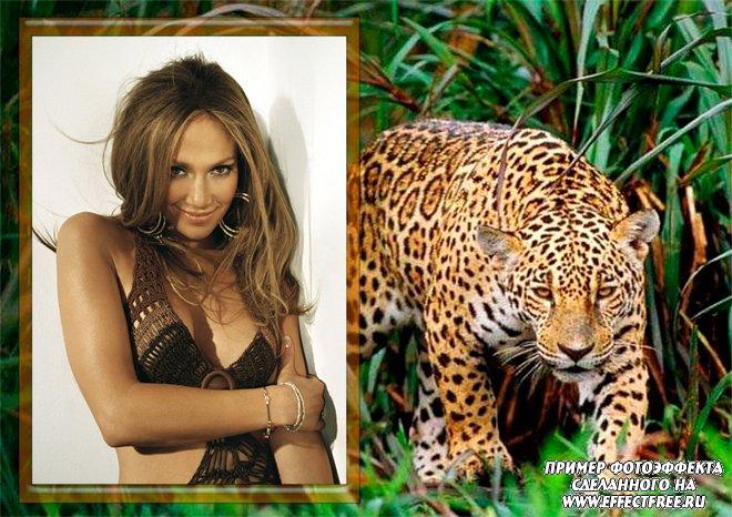 Рамочка для фото с леопардом, вставить фотов рамку онлайн