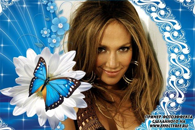 Голубая рамочка с ромашкой и бабочкой, сделать онлайн