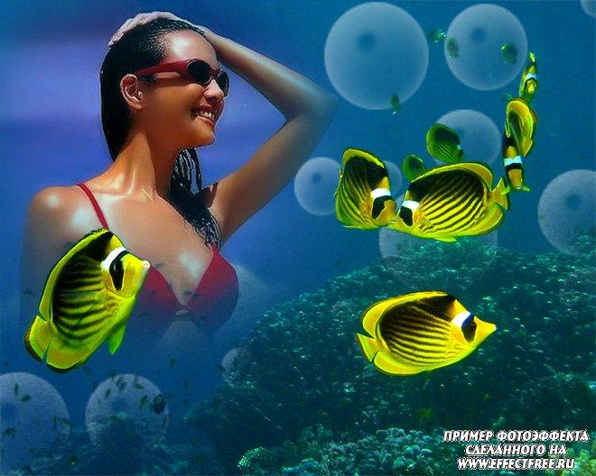 Классный фотоэффект на морском дне в окружении желтых рыбок, сделать онлайн