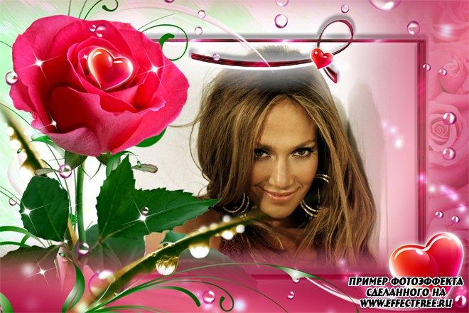 Романтическая рамка с красивой розой и сердечками, сделать онлайн