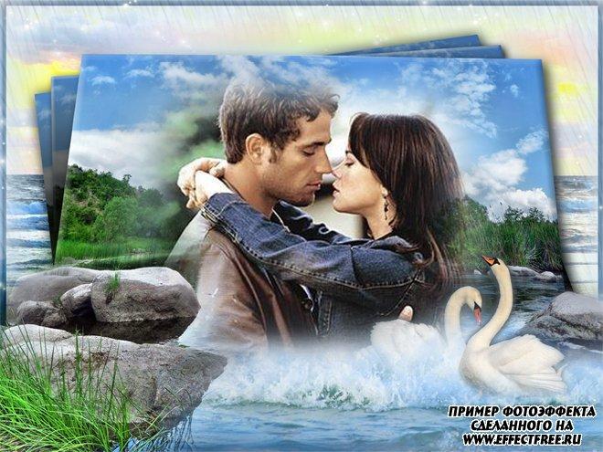Интересная романтическая рамочка с лебедями, вставить фото в рамку онлайн