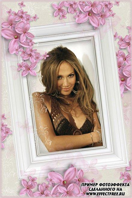 Рамка - портрет с нежными розовыми цветами, сделать в онлайн фотошопе