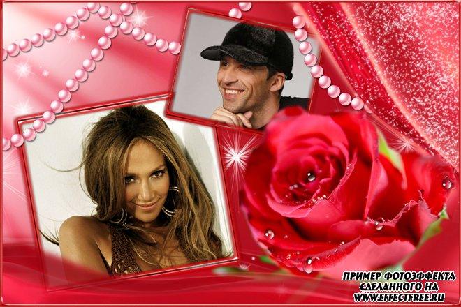 Красивая рамка с шикарной красной розой на два фото, онлайн фотошоп