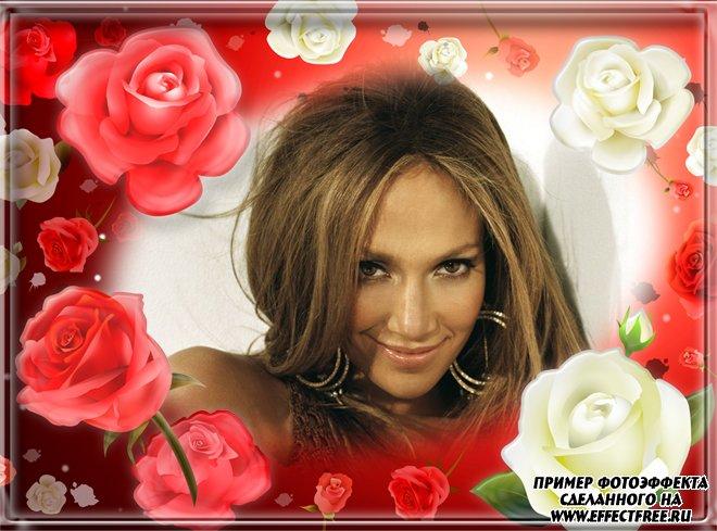 Рамка для фото с красными и белой розами, сделать в онлайн редакторе