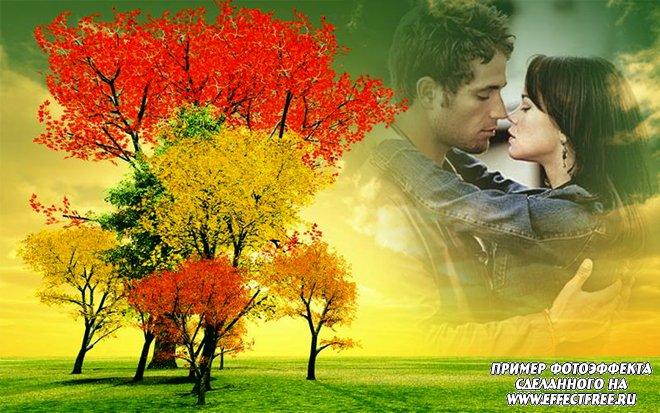 Яркий фотоэффект в красках осени на фоне неба, сделать онлайн