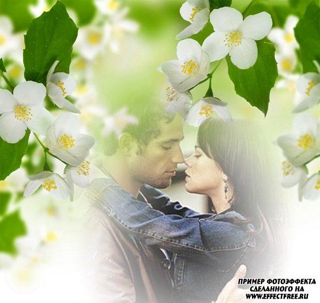 Нежный романтический фотоэффект с белыми цветами жасмина, вставить фото онлайн