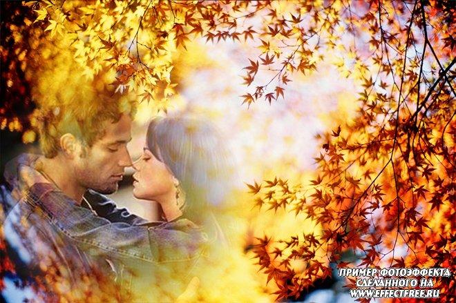 Красивый осенний фотоколлаж на фоне ярких желто-красных листьев, сделать онлайн
