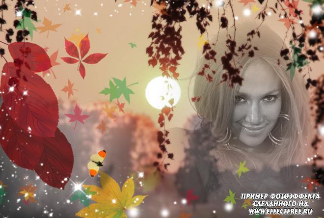Осенний фотоколлаж с яркими листьями и заходящим солнцем, вставить фото онлайн