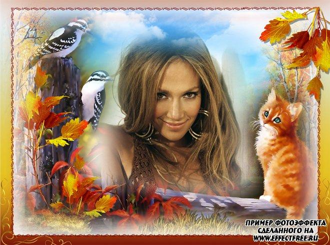 Осенняя рамка для фото с рыжим котенком, сделать в онлайн редакторе