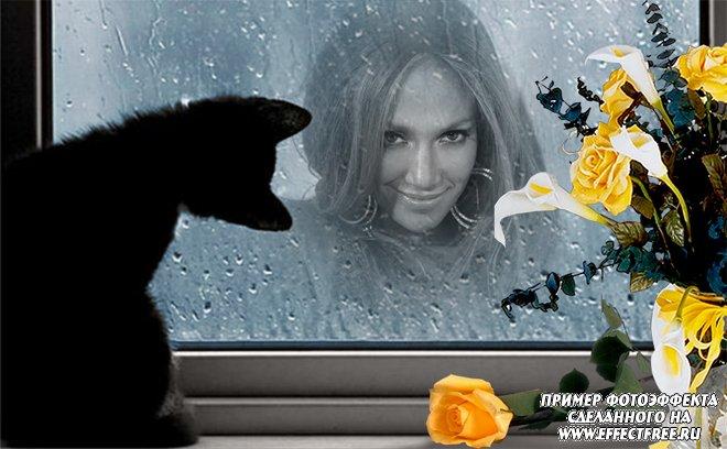 Фотоэффект в мокром окне под взглядом черного котенка, сделать онлайн