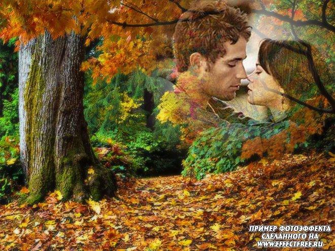 Осенний фотоколлаж с фотографией на фоне ярких осенних деревьев, сделать онлайн