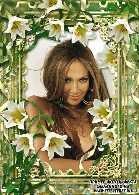 Рамка в зеленых тонах с белыми лилиями, вставить фото в рамку онлайн