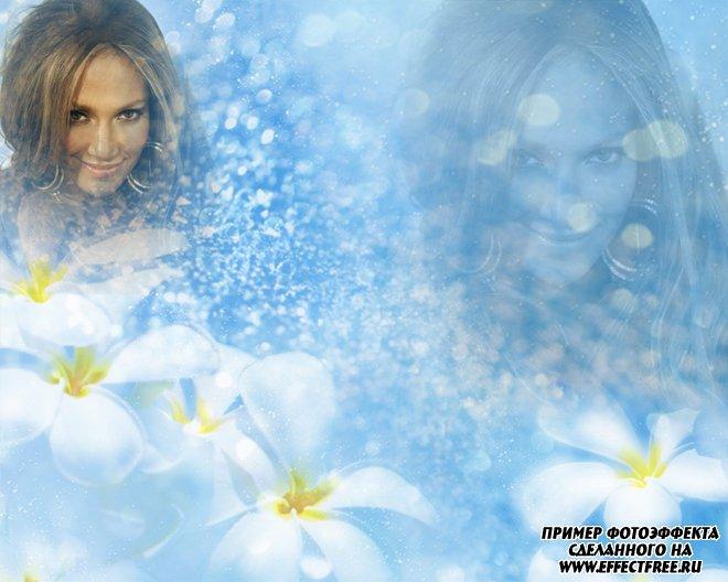 Нежный голубой фотоэффект на два фото с белыми цветами, вставить фото онлайн