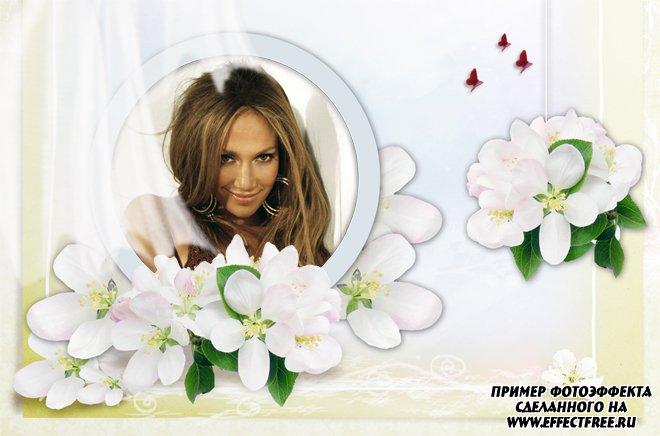 Светлая фоторамочка с прекрасными цветами, сделать в онлайн фотошопе