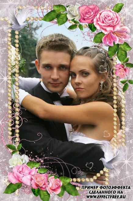Нежная свадебная рамочка с голубями и розовыми розами, вставить фото онлайн