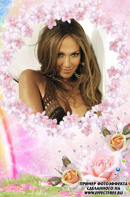Нежная красивая рамочка с розовыми цветами, вставить фото в рамку онлайне