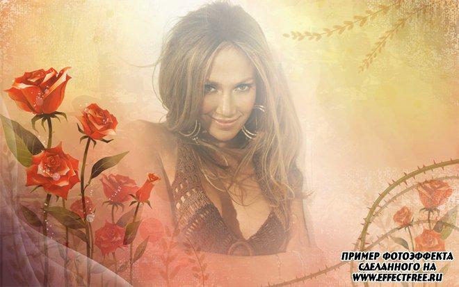 Нежный женский фотоколлаж с красными цветами, сделать онлайн на сайте