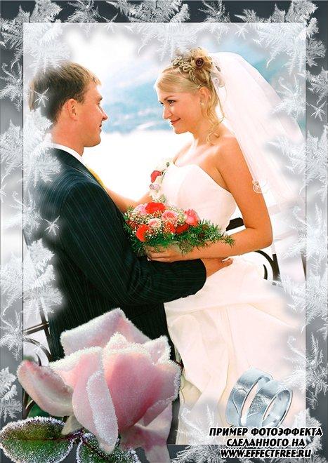 Свадебная рамочка с нежной розой и обручальными кольцами, сделать онлайн