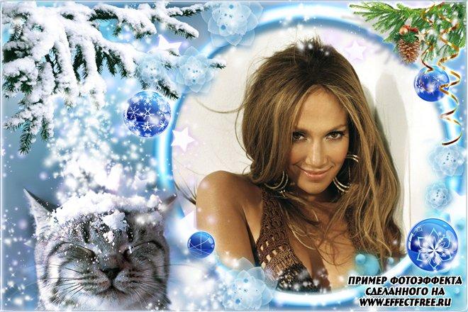 Зимняя фоторамка с котом в новогоднем лесу, сделать в онлайн редакторе
