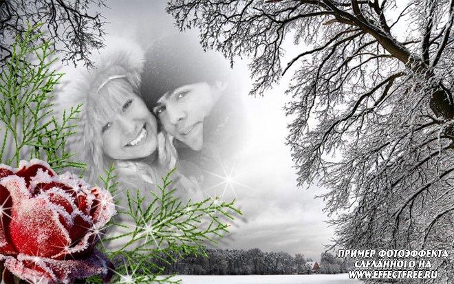 Интересный фотоколлаж с замерзшей розой на фоне черно-белого заснеженного поля, сделать онлайн