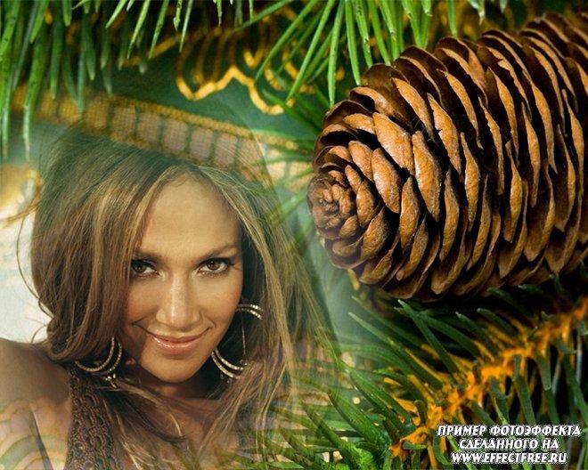 Фотоэффект в окружении зеленой ели, вставить фото онлайн