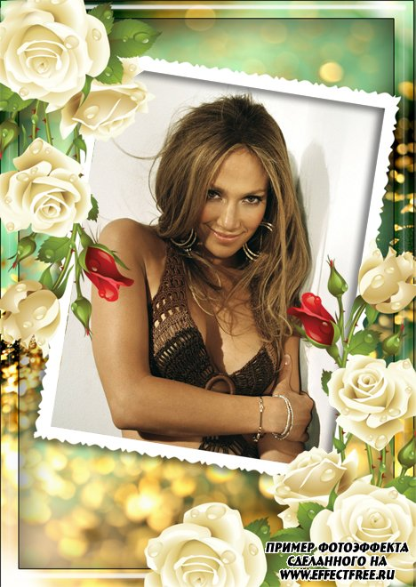 Фоторамка с нежными розами, сделать в онлайн фотошопе